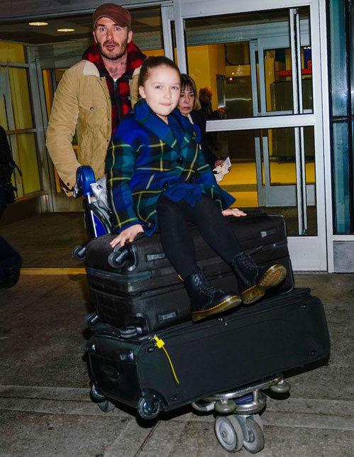 Cô nhóc Harper ngồi chễm chệ trên hành lý, được bố đẩy tại phi trường.