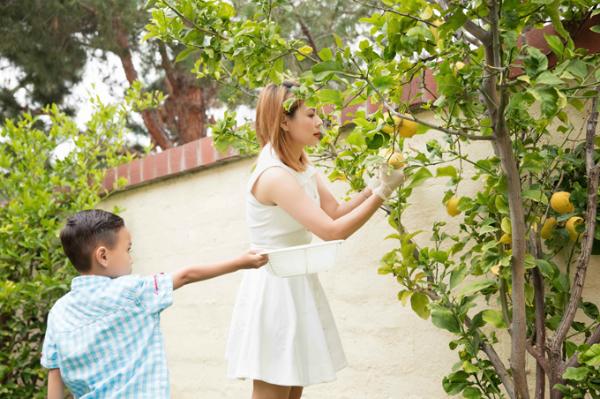 Thanh Thảo cho biết cô muốn mua nhà vườn lớn để thoả mãn sở thích trồng rau củ quả và cây ăn trái.