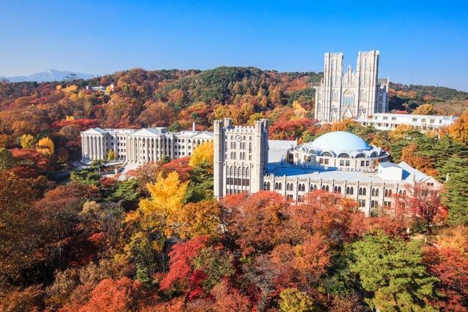 <p> <strong>Các trường Đại học</strong> ở Seoul, nổi bật là Đại học Kyunghee với các cụm nhà xây theo kiểu kiến trúc La Mã giữa đồi lá vàng lá đỏ rực rỡ là điểm chụp ảnh mùa thu ảo khỏi chê. Đại học Yonsei có khuôn viên rộng cùng hàng cây phong đỏ rất đẹp. Đại học nữ Ewha hiện đại hay Đại học Hanyang bên sông Hàn thơ mộng cũng là điểm ngắm lá thu đẹp ngay tại trung tâm thủ đô.</p>