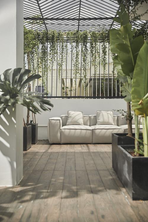 Trong nhà có nhiều cây phù hợp miền nhiệt đới như chuối cảnh, monsterra.