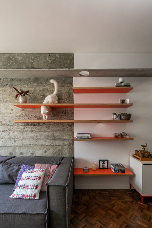 Căn hộ này nằm trong một toà chung cư thuộc kiến trúc điển hình của những năm 1950. Mục tiêu cải tạo mà KTS hướng đến là tận dụng các điểm kiến trúc đặc trưng của thời kỳ này như không gian rộng, trần cao, vòm cửa sổ lớn, sàn gỗ ipe (quả óc chó Brazil).