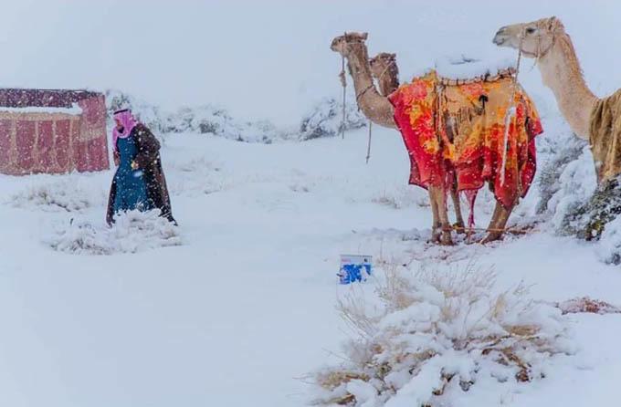 Năm 2018, tuyết cũng xuất hiện ở Saudi Arabia, vì thế người dân đã rất hứng thú khi được chơi trượt tuyết hay ném bóng tuyết. Tháng 1 được xem là tháng lạnh nhất ở vương quốc này, với nền nhiệt trung bình là 20,2 độ C.