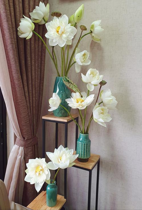 Bình hoa sen được phân bổ theo các cao tầng khác nhau của chị Ánh. Thông thường, chị có thể chơi hoa sen được khoảng 2 ngày là đến lúc sen tàn.