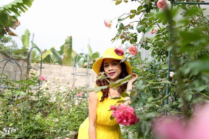 Chủ nhân của khu vườn gồm 200 gốc hồng là chị Nguyễn Phương Huyền, sinh năm 1983, đang sống tại Hà Giang. Vườn hồng 100 m2 được mẹ một con gây dựng từ năm 2013. Lúc đầu, chị trồng những loại hoa thân thảo như dạ yến thảo, thu hải đường. Sau 3 tháng, chị bắt đầu trồng hồng. Trồng hồng ta được 3 tháng, tôi bắt gặp hình ảnh một giàn hoa hồng vàng trên mạng và bắt đầu săn lùng hồng ngoại từ lúc ấy, chị kể.