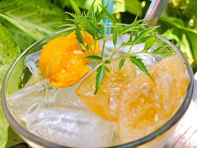 Nước tắc chanh muối giảm đau họng - 2