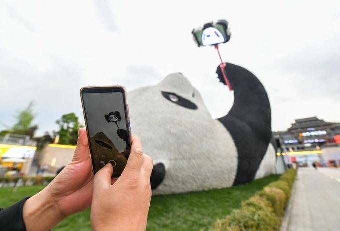Florentijn Hofman - tác giả bức tượng - có niềm đam mê với cảnh thiên nhiên, văn hóa của Thành Đô cũng như Đạo giáo. Và Selfie Panda được lấy cảm hứng từ câu chuyện có thật về chú gấu trúc đi lạc trong khu trung tâm Đô Giang Yển, từng gây sốt trên mạng xã hội Trung Quốc hồi năm 2005.