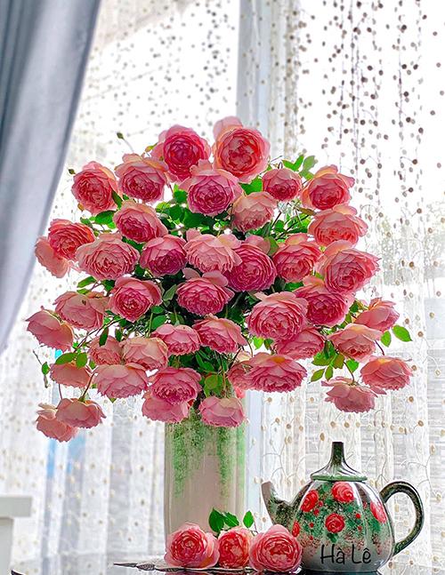 Do hoa rủ mềm mại, thân mảnh mà bông to như chén uống nước nên khi cắm, chị Hà Lê gợi ý chọn chiếc bình cổ thật nhỏ để dễ giữ được hoa đứng thẳng. Bình miệng rộng rất khó cắm vì hoa bị ngả nghiêng, xiêu vẹo khó giữ được dáng, chị Hà bật mí.