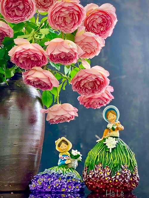 Chị nhận xét hoa hồng có cành dáng rủ nên thích hợp để làm giàn leo ban công, hàng rào. Với màu sắc cam cá hồi, các cánh xếp tầng lớp như đài sen, hương thơm ngọt ngào nên loài hoa này còn có một cái tên mỹ miều là búp sen trên cạn.