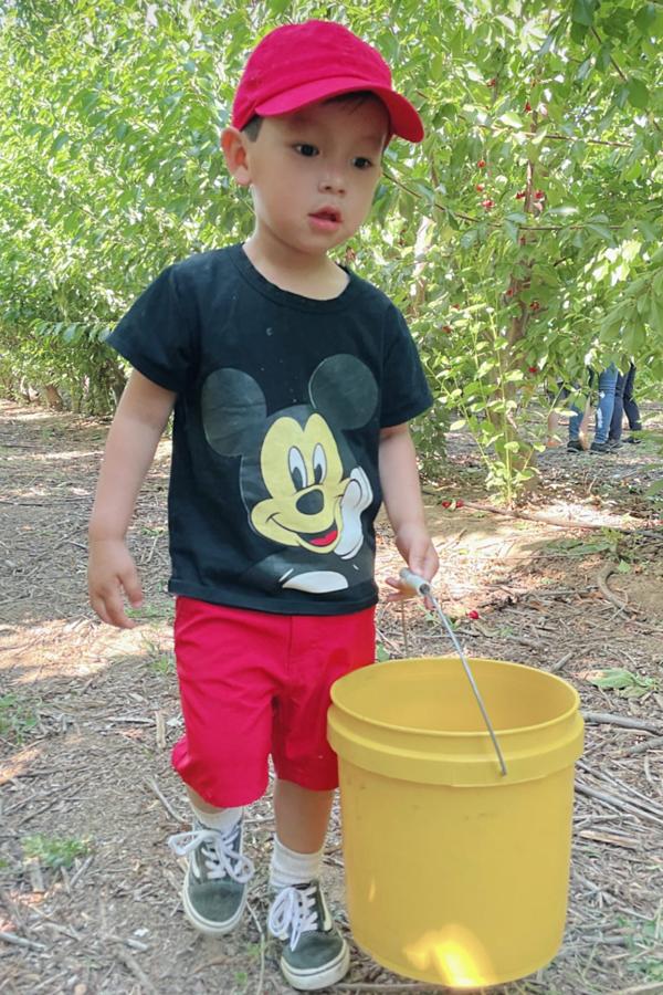Ngày cuối tuần, Max cùng mẹ đi hái trái cây ở các nông trại. Hoa hậu Hoàn vũ Việt Nam muốn con trai tiếp xúc nhiều với thiên nhiên, có nhiều trải nghiệm đáng nhớ.