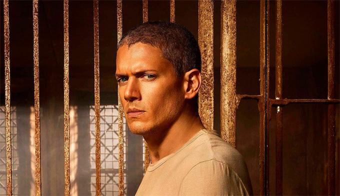 Wentworth Miller nổi tiếng với vai diễn Michael Scofield trong 5 phần phim Vượt ngục.