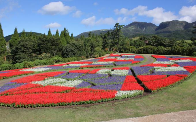 Giá vé vào cửa: người lớn (1.300 yen, tương đương 170.000 đồng), trẻ em (500 yen, tương đương 100.000 đồng) và người cao tuổi (1.100 yen, tương đương 230.000 đồng). Công viên đón khách từ 8h30 đến 17h30. Ngoài công viên hoa, du khách còn có thể ghé qua khu tắm suối nóng onsen Kurokawa , cách đó chỉ khoảng 15 km. Ảnh: Visit Kyushu